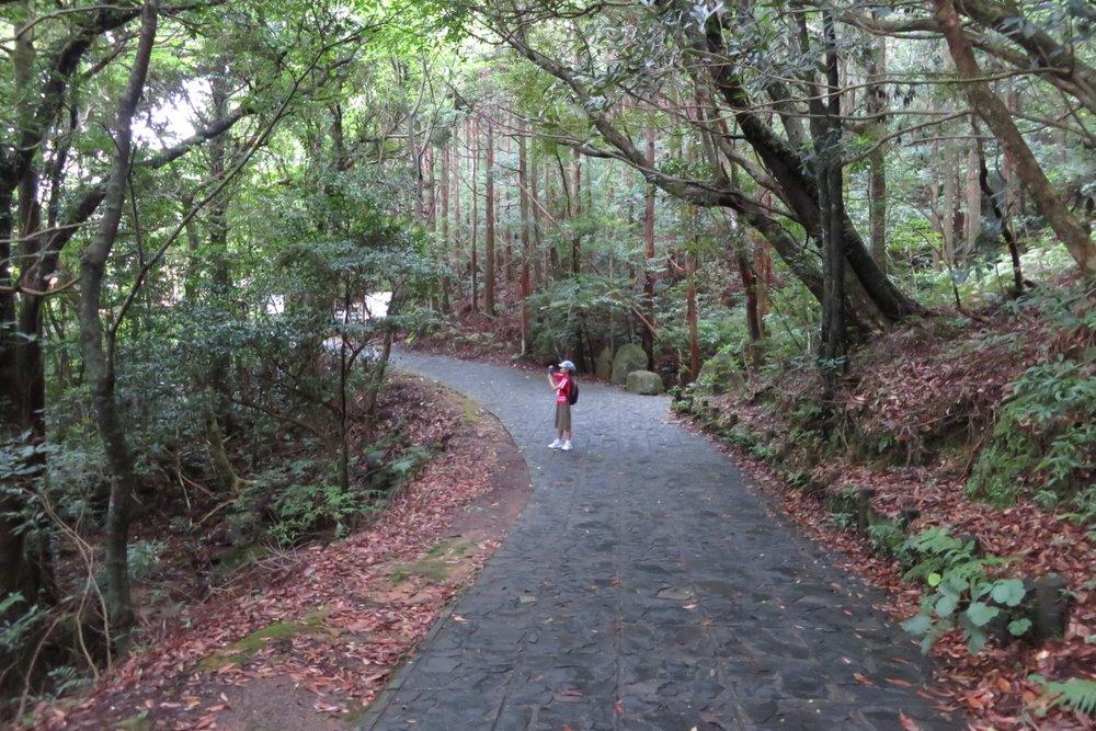 屋久島 千尋の滝 遊歩道