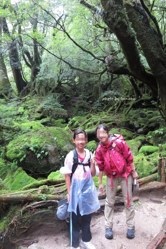 屋久島 白谷雲水峡 苔むす森 小学生 ブログ